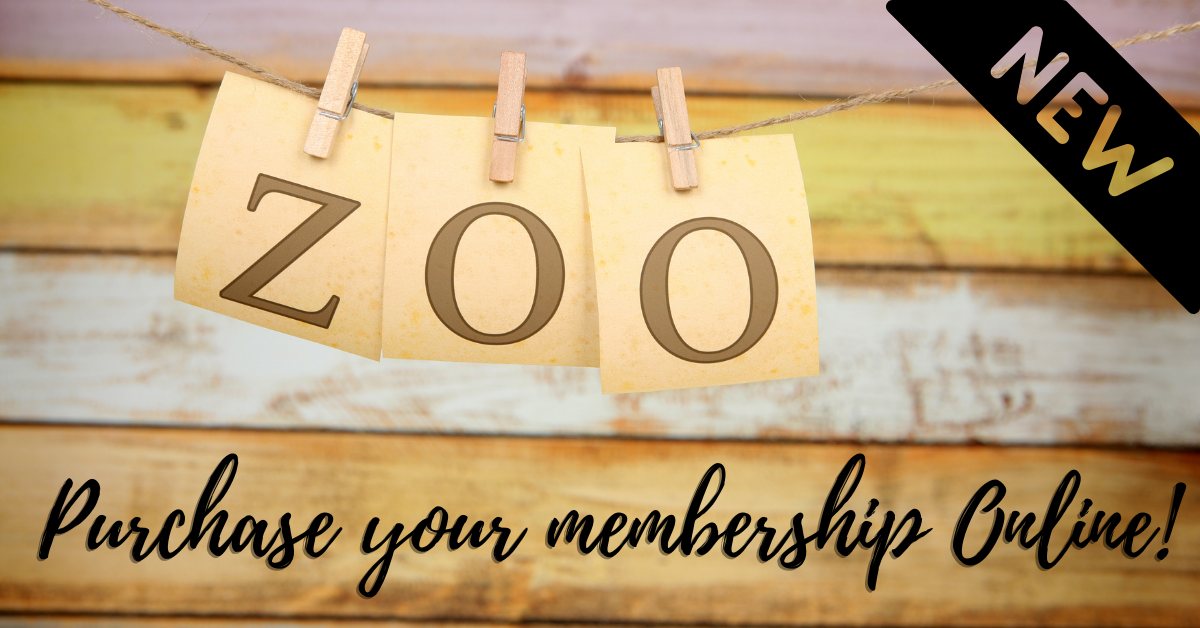 Purchase your zoo membership online! Opens in new window
