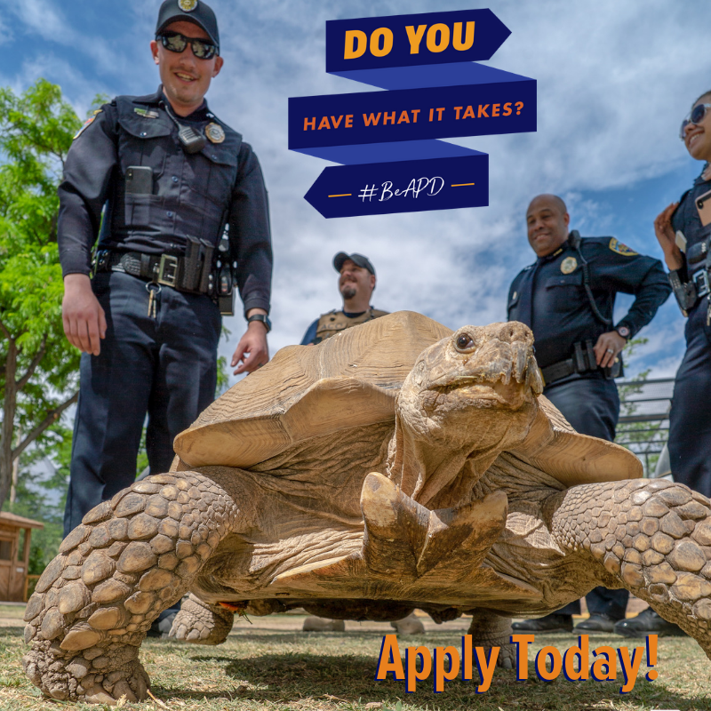 Be APD Turtle Apply Today!