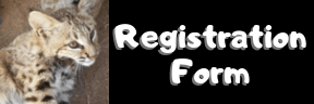 Registration Form Button